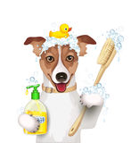 Dog bathing time, with a plastic duck, a scrubbing brush and liquid soap Stock Photography
