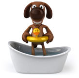 Dog in a bathtub Stock Photo