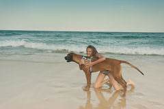 Dog at beach with girl Royalty Free Stock Image