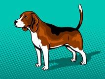 Dog Beagle pop art style vector illustration Royalty Free Stock Photography