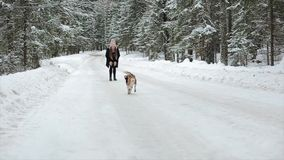 Dog beagle runs through the snow. Cute young hipster couple having fun in winter park with their dog on a bright day and. Cute young hipster couple having fun in stock video footage