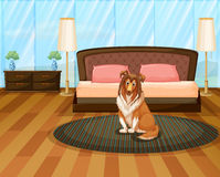 Dog in bedroom Stock Images