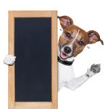 Dog banner Stock Photography
