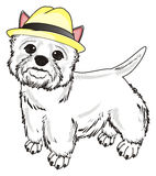 Dog in beige hat Stock Photography