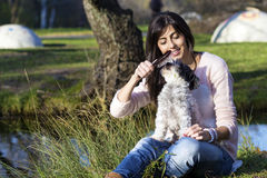 Dog being groomed with hair brush by young woman in the park Stock Photography