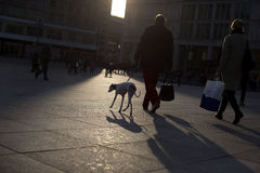 Dog. Berlin, Germany, April 15, 2013: A man walk with his dog on the Alexanderplatz Square, at the afternoon, after a Winter day shopping Royalty Free Stock Photo