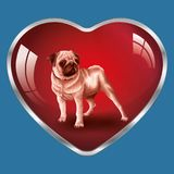 I like dogs, they are in my heart ! royalty free illustration