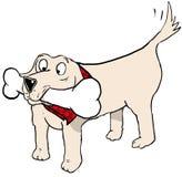 Dog big bone Royalty Free Stock Photos