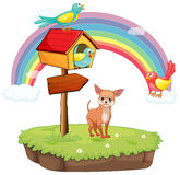 Dog and birdhouse Stock Images