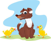 Dog and birds Royalty Free Stock Image