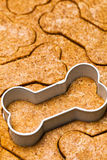 Dog Biscuit Dough With Cookie Cutter Royalty Free Stock Images