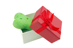Dog biscuit and gift box Royalty Free Stock Photos