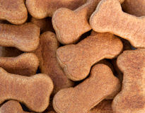 Dog Biscuits stock photo