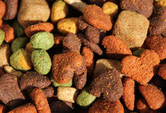 Dog biscuits Stock Images