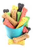 Dog biscuits and a blue bucket Royalty Free Stock Photos