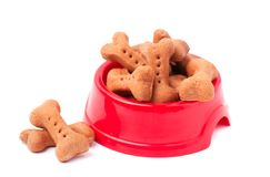 Dog biscuits in the form of bones in red plate,  on white. Background Royalty Free Stock Images
