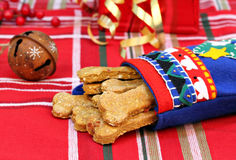Dog Biscuits made with pumpkin and bacon in a Christmas stocking Stock Photography