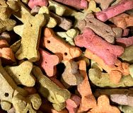 Dog Biscuits, Multi-colored. Sold in bulk at Winco. In Oklahoma City. Enough to feed a whole pack of dogs royalty free stock images