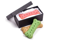 Dog biscuits and presentation box Royalty Free Stock Photos
