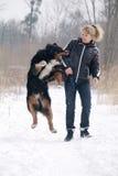Dog bites woman Royalty Free Stock Images
