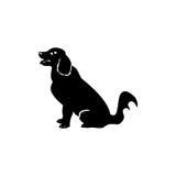 Dog black Abracadabra Royalty Free Stock Photo