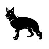 Dog black Abracadabra Royalty Free Stock Photography