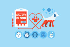 Dog Blood Donation Concept Royalty Free Stock Photos