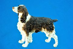 Dog on a blue background, the oldest pet. The dog represents such good qualities as loyalty, alertness, affection, sincerity and obedience stock photography