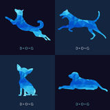 Dog - Blue low poly vector set Design Stock Photography