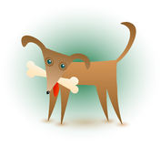 Dog & Bone. A cute brown dog with a bone in his mouth Royalty Free Stock Photo