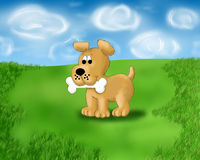 Dog with bone. Dog with a bone in his mouth is on the lawn in the summer Stock Images
