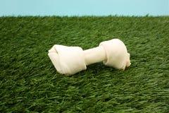 Dog Bone Royalty Free Stock Images