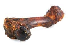 Dog bone. Stock Photos