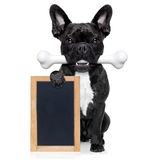 Dog with bone Stock Images