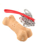 Dog bone and leash Stock Photography