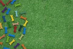 Dog bones on green grass background Stock Photos