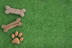 Dog bones on green grass background Stock Image