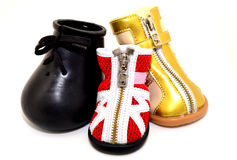 Dog Boots Set. High boots with zipper and velcro for dogs royalty free stock images