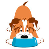 Dog With Bowl. Cartoon dog eating or drinking from a dog bowl vector illustration