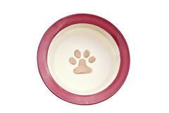 Dog bowl filled with water Royalty Free Stock Photos
