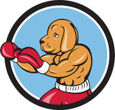 Dog Boxer Fighting Stance Circle Cartoon. Illustration of a dog boxer in a fighting stance viewed from the side set inside circle on isolated background done in Stock Photo