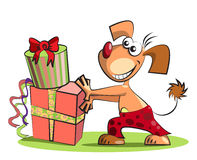Dog and boxes of presents,  on white Stock Photo