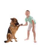 Dog and boy Stock Photo