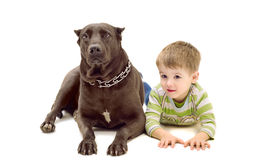 Dog and  boy. Dog and a boy lying together on the floor Royalty Free Stock Photography