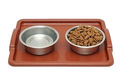 Dog breakfast is served Stock Photo
