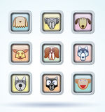 Dog breed collection icons - vector illustration Stock Photos