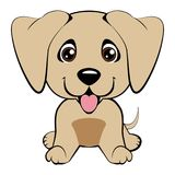 Dog breed Italian Greyhound isolated on the white background vector illustration