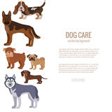 Dog breed silhouette colorful illustration set Royalty Free Stock Photo
