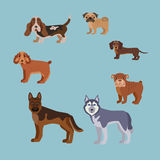 Dog breed silhouette colorful illustration set Stock Photo