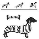 dog breed silhouettes set with names. Of breeds inside on white baclground. Vector illustration Royalty Free Stock Image